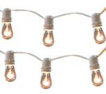 50' Cafe Lights - White 0095-2095