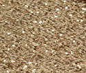 Champagne Sequin 0085-1523